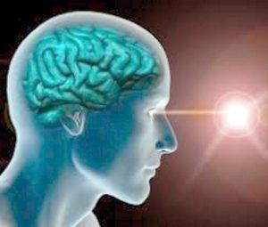 Occhi cervello connubio