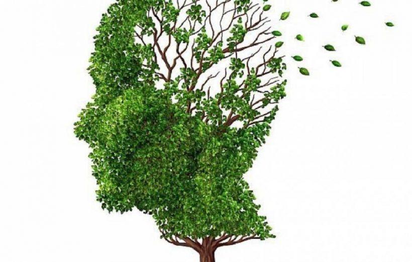 Alzheimer malattia devastante