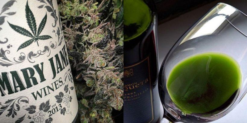 Vino cannabis infuso